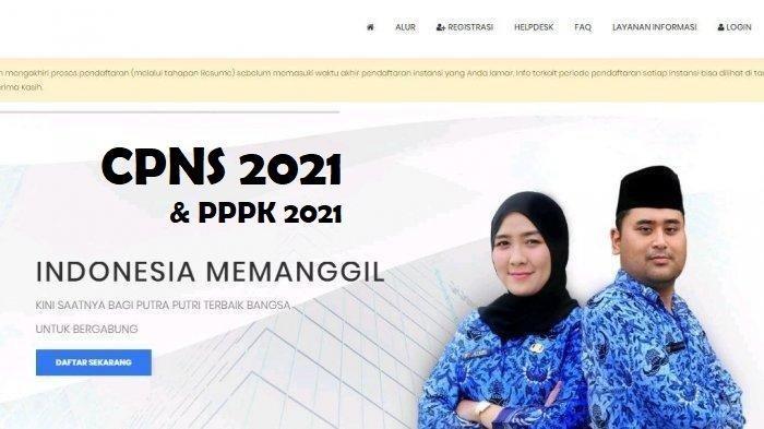 Berikut Jumlah Kebutuhan PNS dan PPPK di CPNS 2021