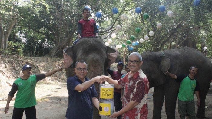 Novotel & ibis Styles Solo Gandeng Solo Zoo, Dukung Kampanye Hari Gajah Dunia