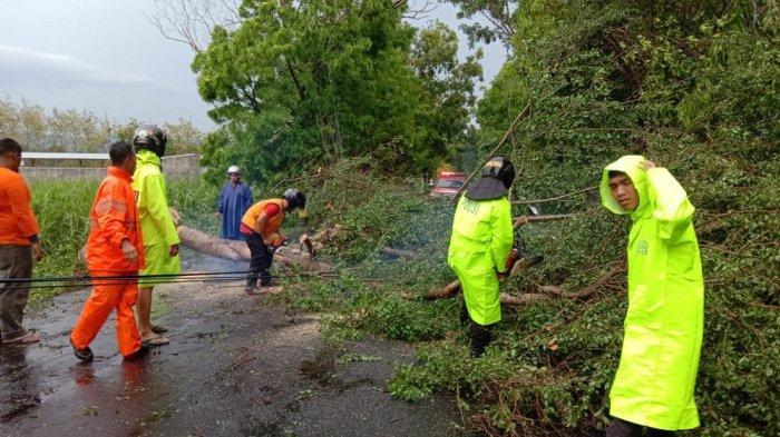 Dampak Cuaca Ekstrem, BPBD Kulon Progo Catat 97 Laporan Kebencanaan