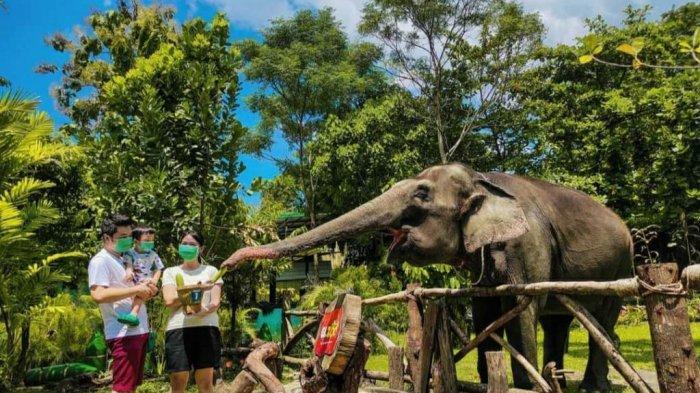 Dapat Diskresi dari Kemenparekraf, GL Zoo Kini Bisa Diakses Anak di Bawah 12 Tahun