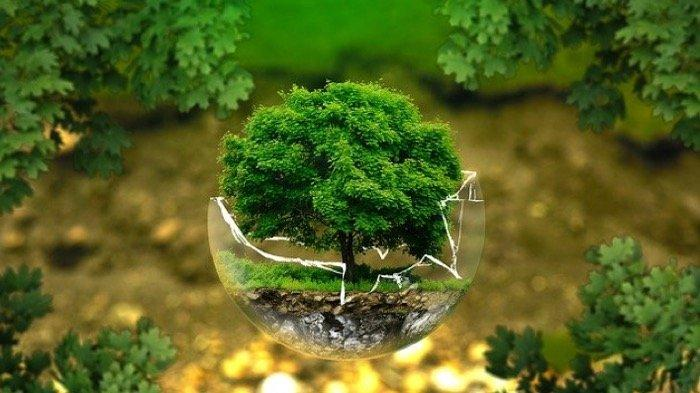 DERETAN Arti Mimpi Menanam Pohon hingga Tanaman Mati Menurut Primbo Jawa, Pertanda Apakah Ini?