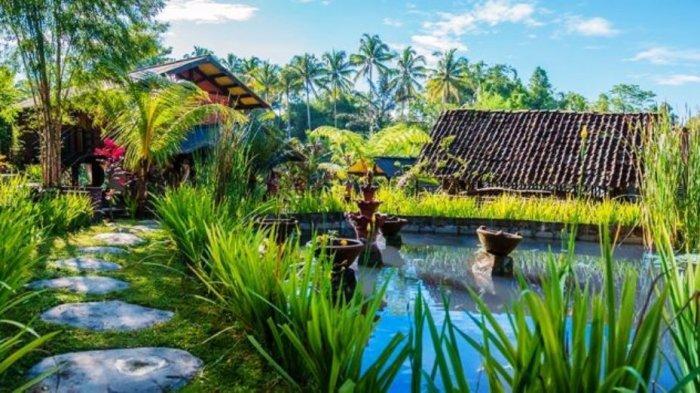 TRIBUN WIKI : Desa Wisata Kembangarum