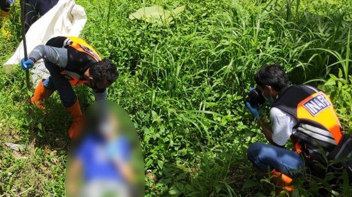 Diduga Minum Obat Penyubur Tanah, Seorang Pria di Kulon Progo Ditemukan Tewas di Perkebunan