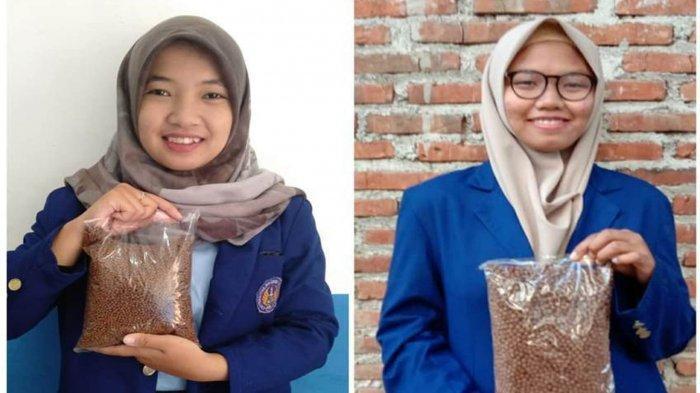 INOVATIF, Tiga Mahasiswi UNY Buat Pakan Lele Alami Tinggi Protein Dari Keong dan Enceng Gondok