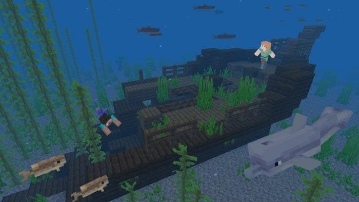 FAKTA-FAKTA Rumput Laut Kering di Game Minecraft yang Perlu Kamu Tahu, Bisa Jadi Sumber Makanan!