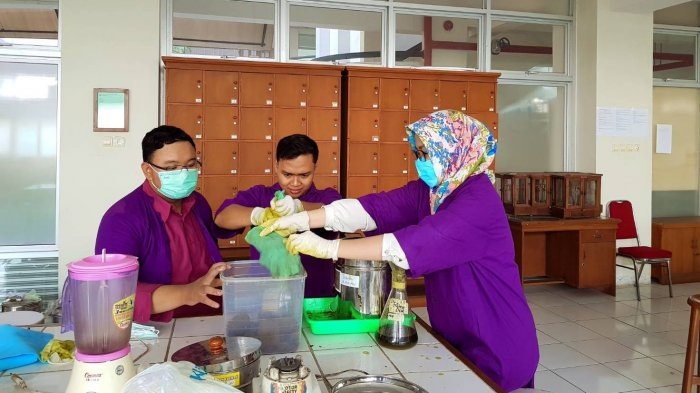 Mahasiswa Kedokteran Umum UMS 'Sulap' Daun Belimbing Wuluh Jadi Bahan Pembunuh Jentik Nyamuk