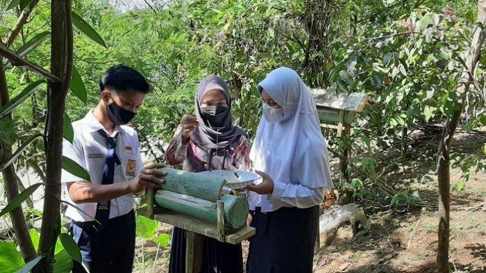 Siasati Edukasi pada Masa Pandemi, Guru SMPN 2 Karangpucung Cilacap Manfaatkan Lebah