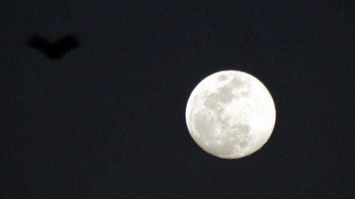 BULAN PURNAMA - Foto-foto bulan saat muncul di ufuk timur menjelang gerhana bulan total