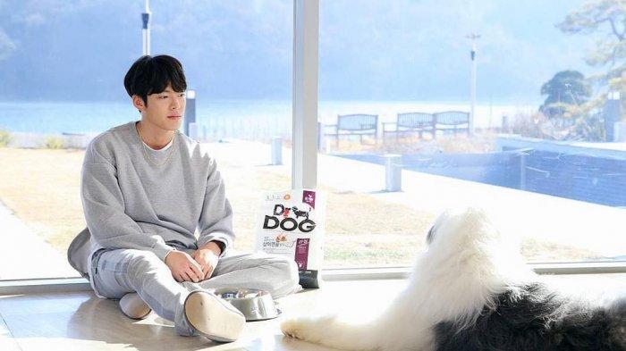 Punya Predikat Sama, Ini 5 Aktor yang Berperan Sebagai Selebritas di Drama Korea