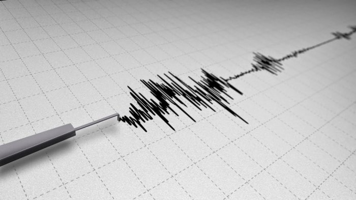 Gempa Dirasakan di Gunungkidul, BPBD Sebut Belum Ada Laporan Kerusakan