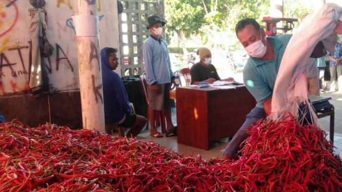 Harga Cabai Merah Besar Merangkak Naik Setelah Petani Melakukan Lelang