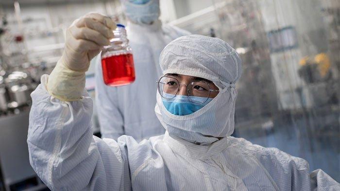 Seorang insinyur melihat sel-sel ginjal monyet ketika dia melakukan tes pada vaksin eksperimental untuk virus corona COVID-19 di dalam laboratorium Ruang Budaya Sel di fasilitas Biotek Sinovac di Beijing.