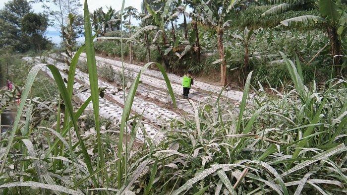 Desa di Lereng Gunung Merapi Diguyur Hujan Abu, BPBD Klaten: Masih Terpantau Kondusif