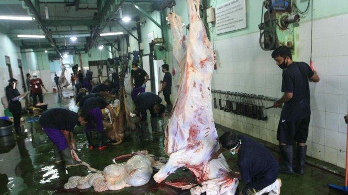 HUKUM Membagikan Daging Kurban Idul Adha Bentuk Olahan Bukan Daging Mentah
