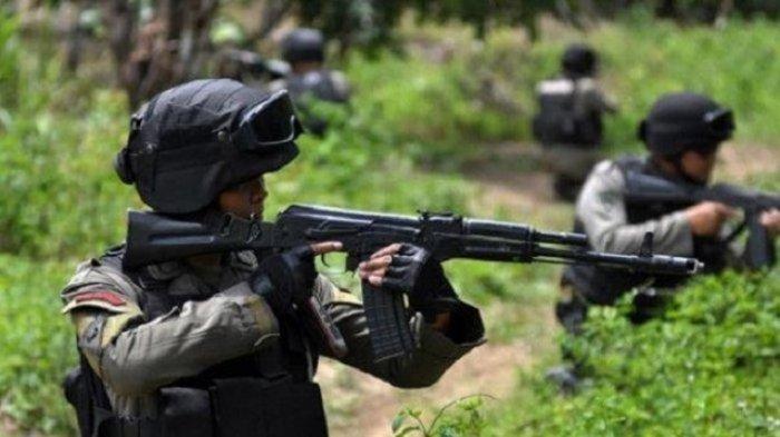 Satu Komandan Operasi KKB Papua Ditembak Mati TNI saat Kontak Senjata di Pegunungan Bintang
