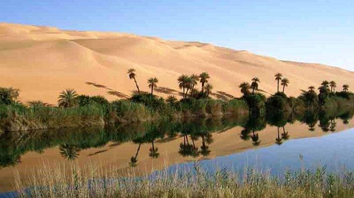 Gurun Sahara akan Berubah Menjadi Kawasan Subur Setiap 20.000 Tahun -  Tribun Jogja