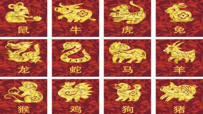 Empat Shio yang Memperoleh Keberuntungan Esok Hari, Kamis 13 Januari 2021