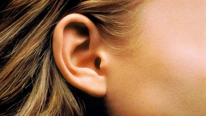 Pertolongan Pertama Jika Ada Sesuatu yang Masuk ke Telinga Anak