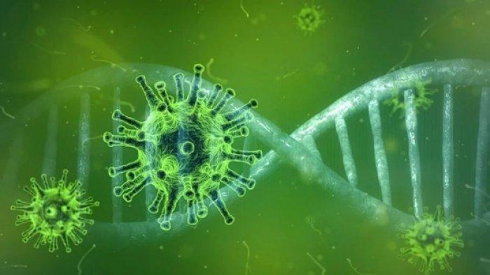 Sudah Masuk Indonesia, Varian Covid-19 B.1.617 Naik Status VoC, Begini Penjelasan Pakar Genetik UGM