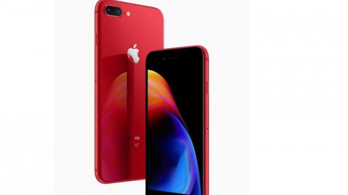 Rekomendasi iPhone Murah dan Masih Layak Dipakai di Tahun 2021