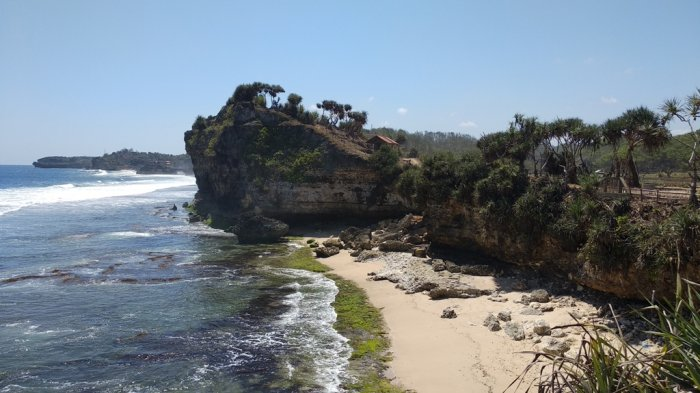 Jarang Dikunjungi Wisatawan Pantai Nglolang Gunungkidul Tawarkan Suasana Asri Tribun Jogja