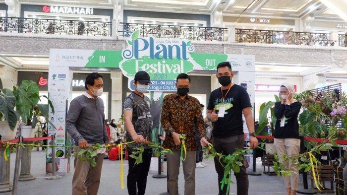 JCM Plant Festival 2021 Manjakan Pecinta Tanaman di Yogyakarta