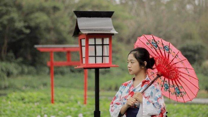 Deretan Wisata di Jogja Musiman yang Hits di Bulan Desember Ini, Ada Ala-ala Jepang Juga lho!
