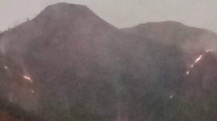BPBD Magelang Lakukan Koordinasi untuk Penanganan Kebakaran Lahan di Gunung Andong