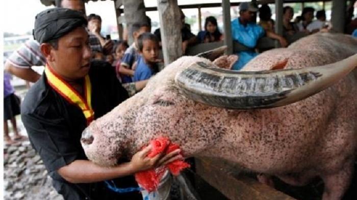 7 Tradisi Unik Menyambut Tahun Baru Islam 1 Muharram atau 1 Suro di Berbagai Penjuru Indonesia