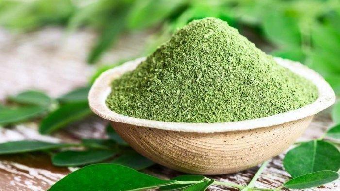 Khasiat Daun Kelor yang Jarang Diketahui, Lengkap dengan Kandungan Nutrisi Moringa