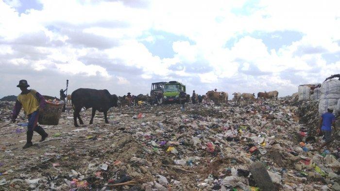Walhi Tolak Teknologi Pengolahan Sampah untuk Pembangkit Listrik