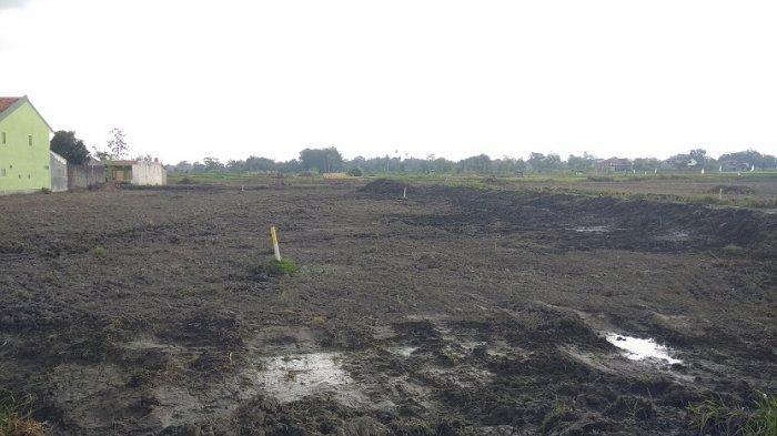 Lahan persawahan dan rumah di Padukuhan Temanggal 2 dan Kadirojo 2, Kalurahan Purwomartani, Kalasan mulai dibersihkan untuk proyek Jogja- Solo.