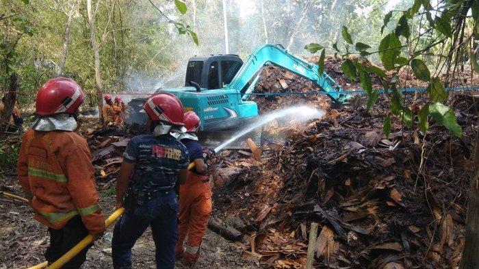 Limbah Tripleks di Bantul Terbakar, Alat Berat dan Puluhan Petugas Pemadam Kebakaran Dikerahkan