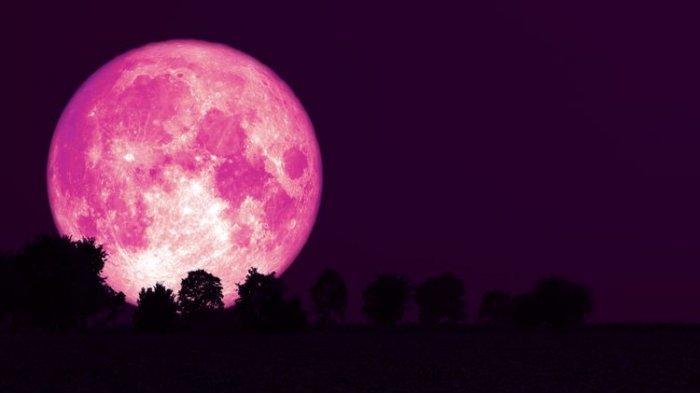 Bulan purnama strawberry atau strawberry full moon.