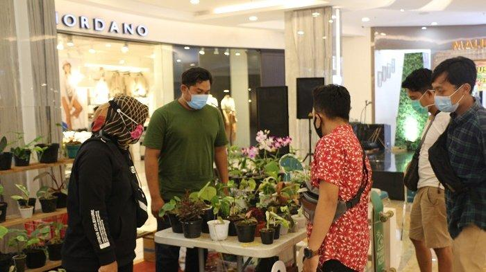 "Suguhkan Pameran Tanaman Hias, Malioboro Mall Gelar ""House Plants Expo #2"""