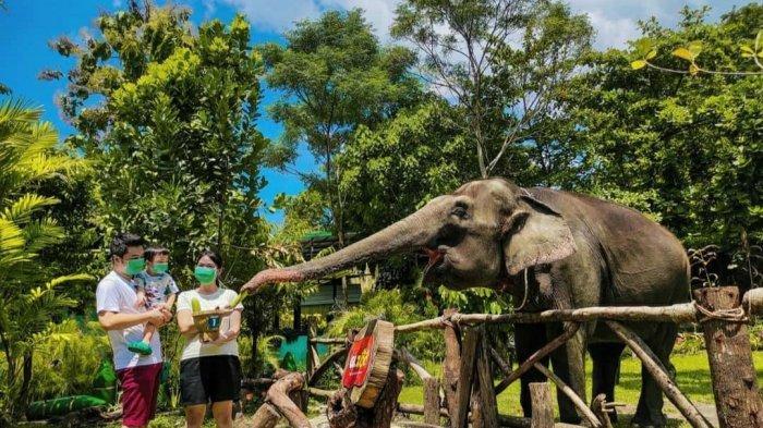 Anak Bisa Masuk GL Zoo, Diskresi Kemenparekraf untuk Wisata DIY