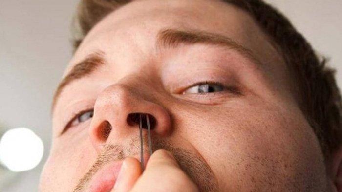 Efek Negatif Mencabut Bulu Hidung yang Mungkin Tak Anda Sadari