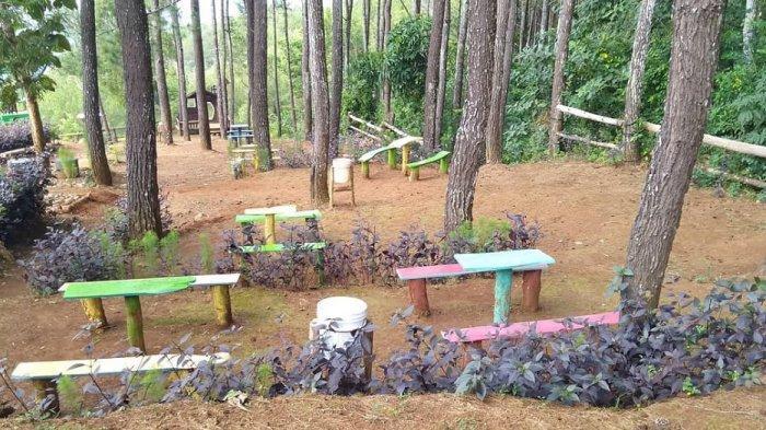 Mengintip Keindahan Alam Desa Wisata Kampung Santan di Bantul