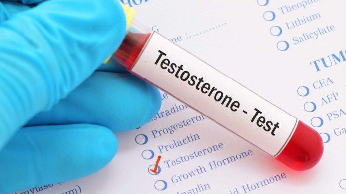 Tips Meningkatkan Hormon Testosteron dengan Konsumsi 8 Jenis Makanan Ini