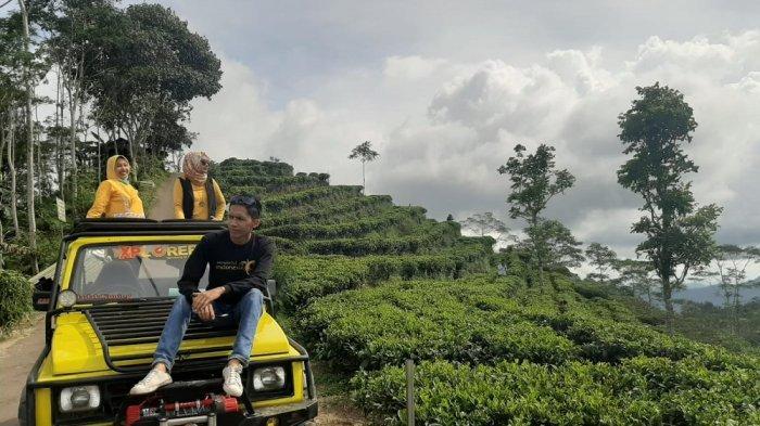Menjelajahi Indahnya Perbukitan Menoreh dengan Mengendarai Jeep