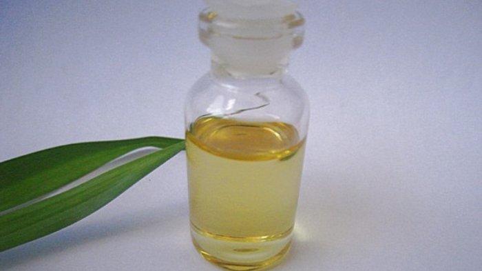 Aroma 8 Minyak Ini Bisa Bangkitkan Gairah Bercinta