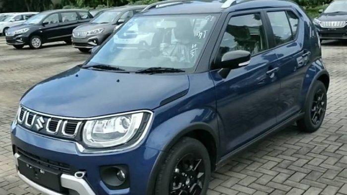 DAFTAR Harga Mobil Suzuki Ignis Bekas Mulai Rp 80 Juta