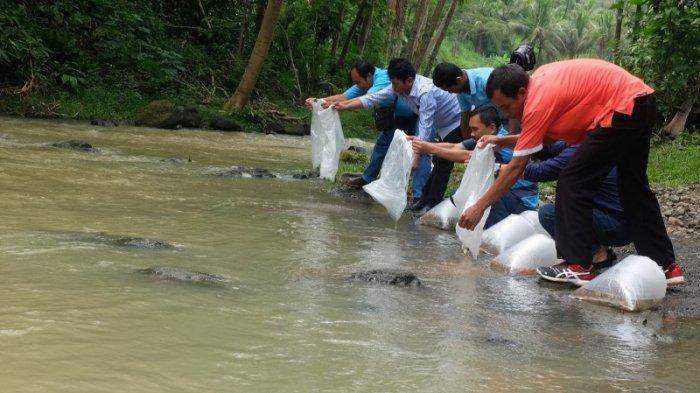Pascakebocoran 1 Ton Cairan Penjernih Air, PDAM Tirta Binangun Tebar Ribuan Benih Ikan di Sungai
