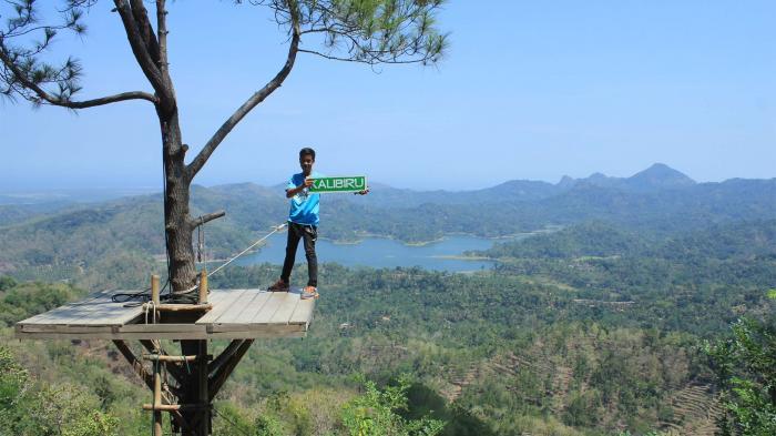 5 Tempat Wisata Alam di Kulonprogo, Mulai dari Kalibiru Hingga Kebun Teh Nglinggo