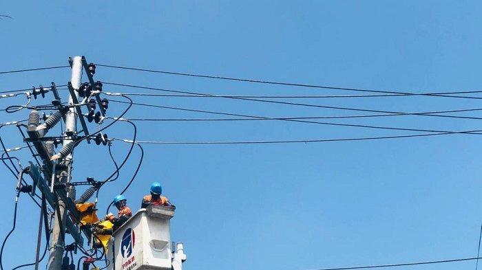 Jaga Pasokan Listrik, PLN UP3 Semarang Rutin Lakukan Pemeliharaan Jaringan Listrik