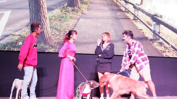 Meriahkan Natal, Intip Serunya Anjing-anjing Lucu dalam Drama Musikal di SCH