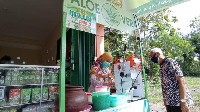 Galery De Cends Aloe Vera Kulon Progo Olah Lidah Buaya Jadi Aneka Produk yang Menyehatkan