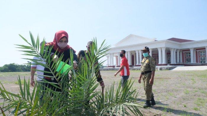Grha Megawati Dihiasi 48 Pohon Kurma