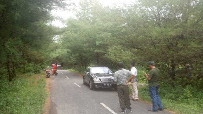 Jalan Hutan Cemara Jadi Alternatif Selfie Wisatawan