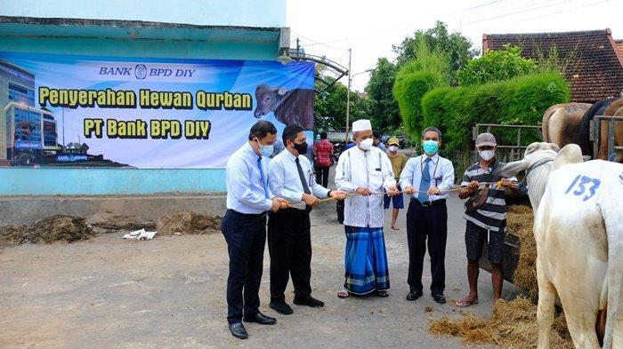 Bank BPD DIY Salurkan 101 Hewan Kurban Sambut Hari Raya Idul Adha 1442 H
